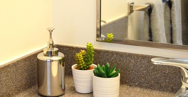UVF 2106 plant bathroomx1